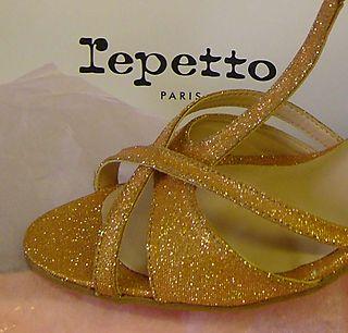 Repetto shoe detail EM99