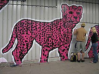 Dillon Cans Festival leopard