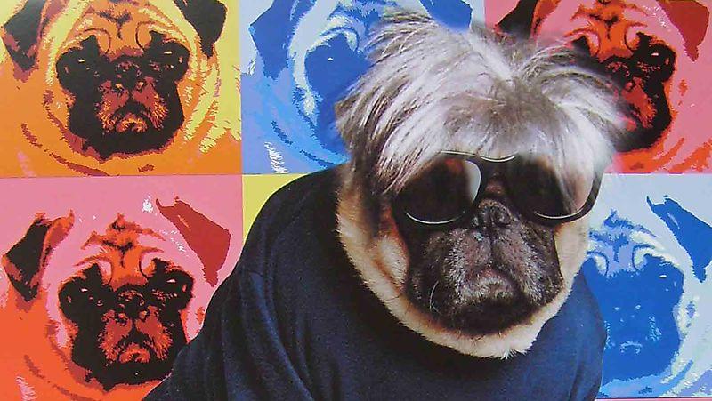 Warhol from Fabulous pugs calendar crop93