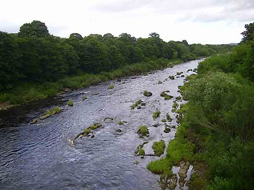 10b River Tyne Bywell56