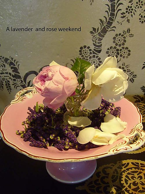 A lavender & rose weekend