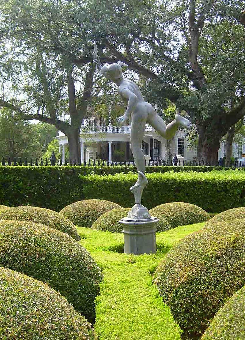 Charleston bun topiary 11