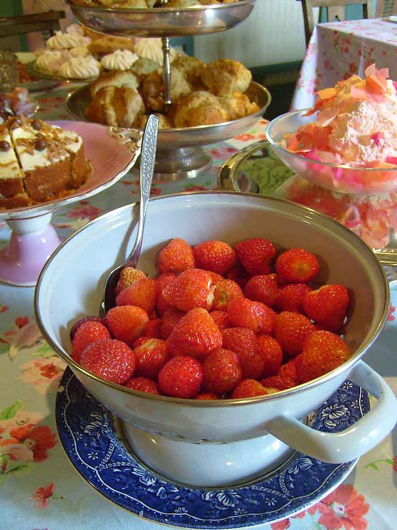 Strawberry tea at Stocksfield 46