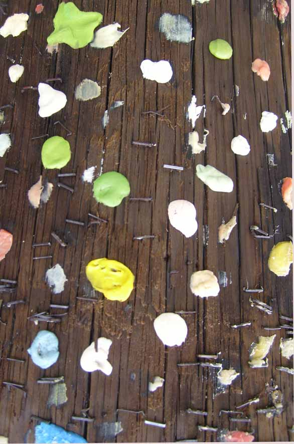 Gum on wooden pole 41