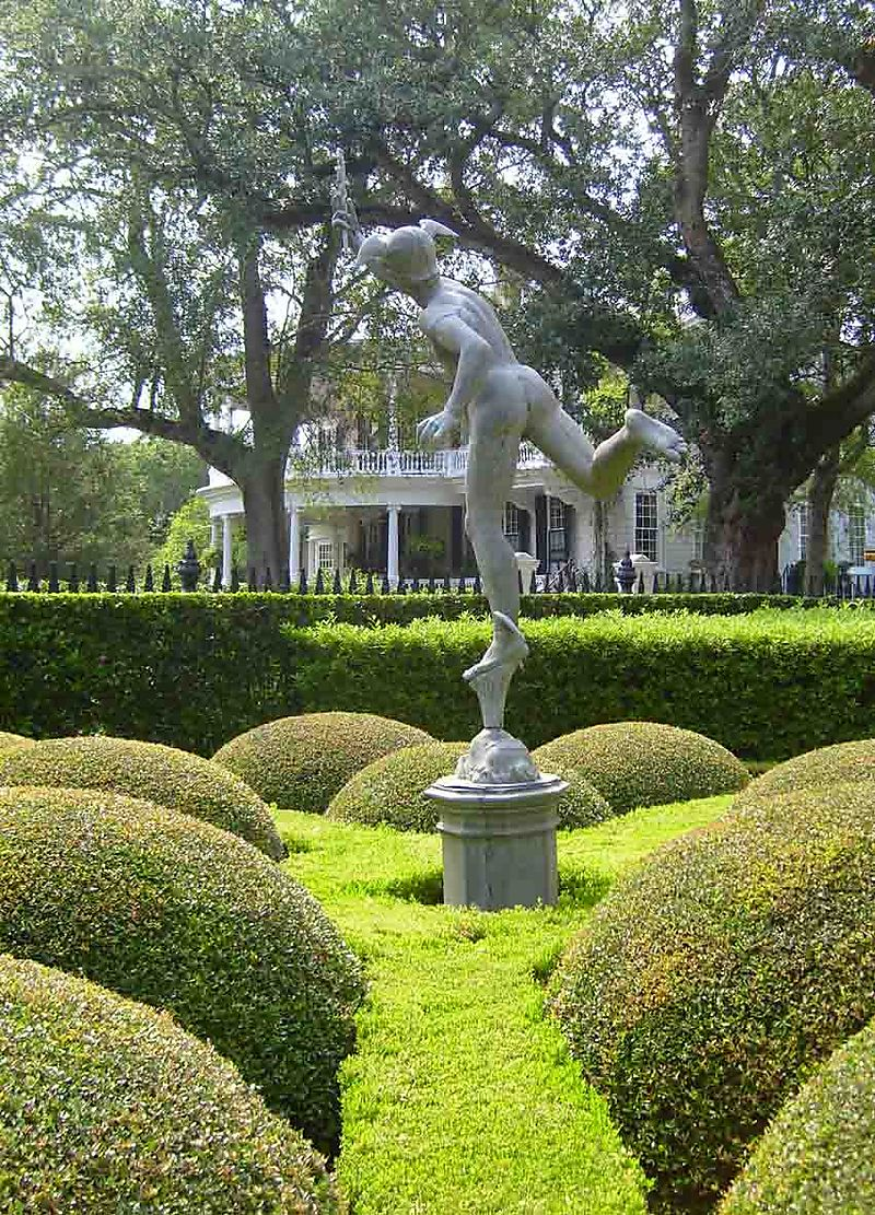Charleston bun topiary 11