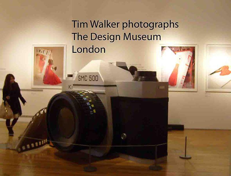 5 Tim Walker title 53