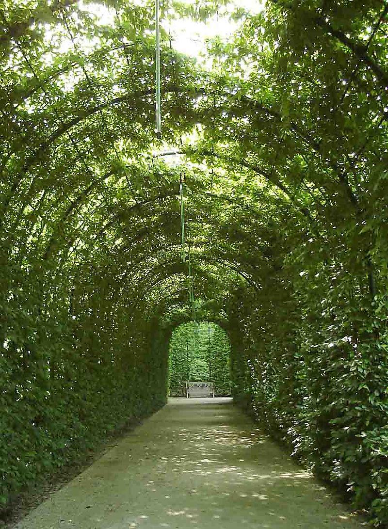 Alnwick Garden_ blog 65