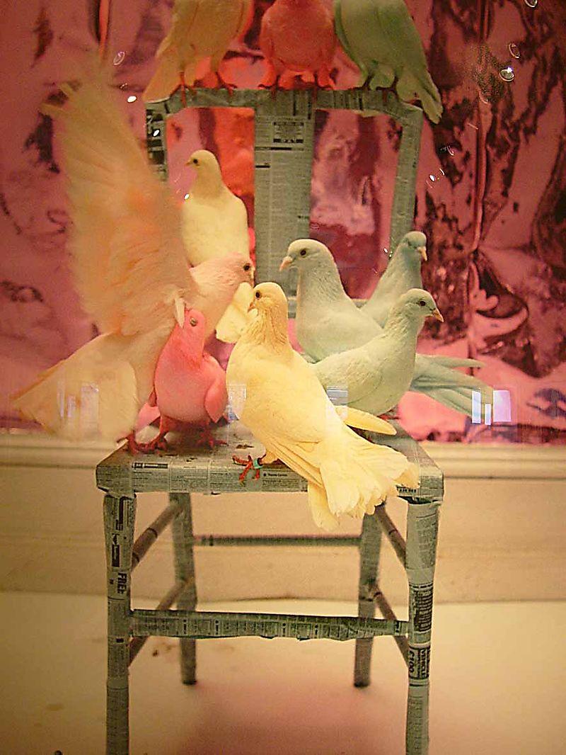 8 Tim Walker pastel doves