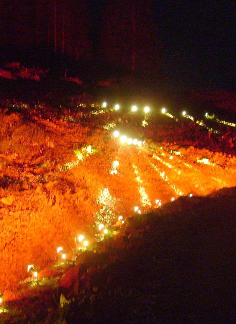 Lava flow at Kielder Forest74 a