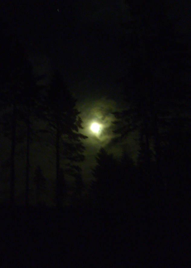 Moonlight Kielder 92