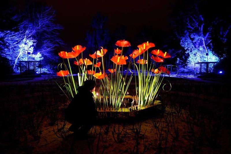1_Enchanted_Parks Rose Bowers