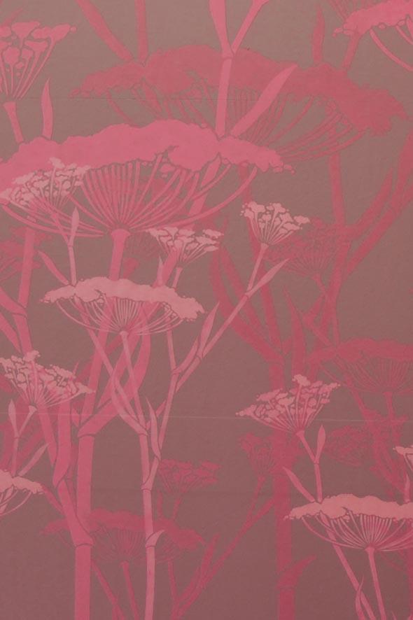 Fennel in pink detail