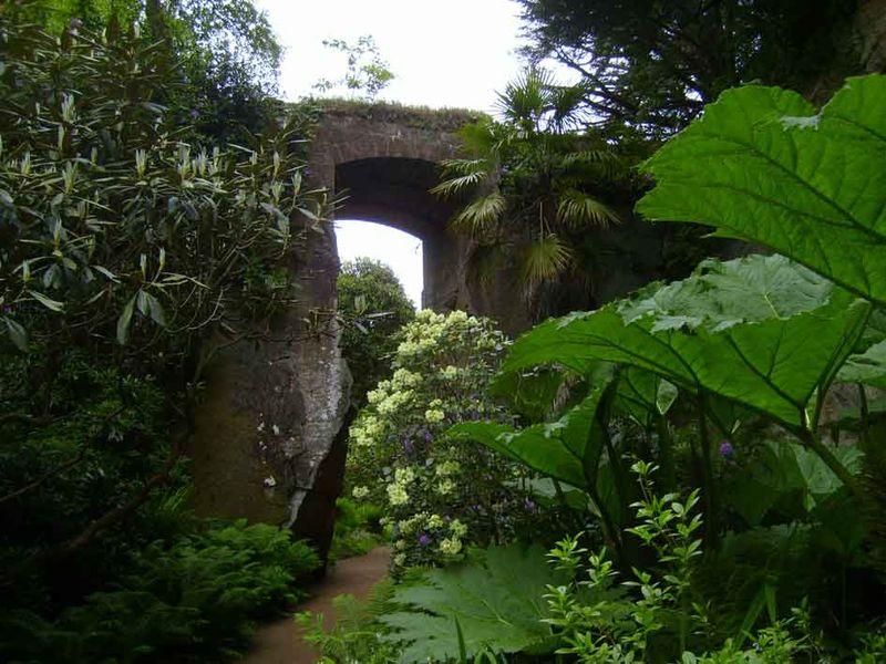 Belsay quarry garden 09