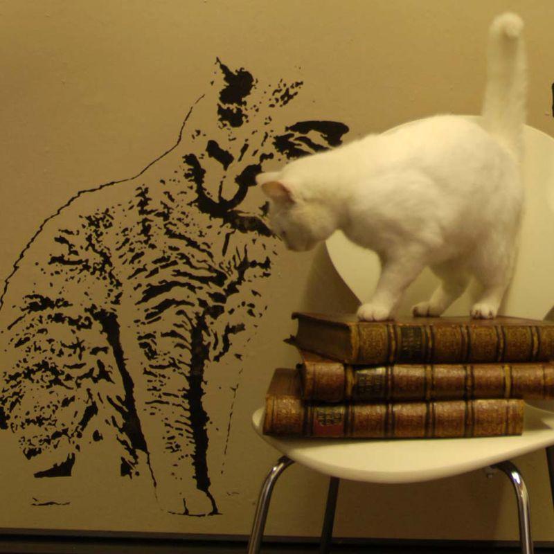 3 cat stencil em027