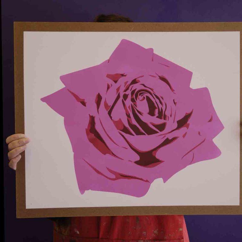 3 co rose