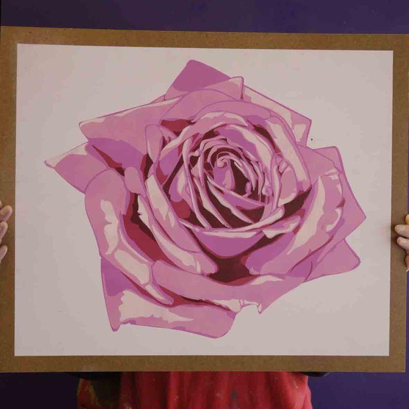 5 co rose