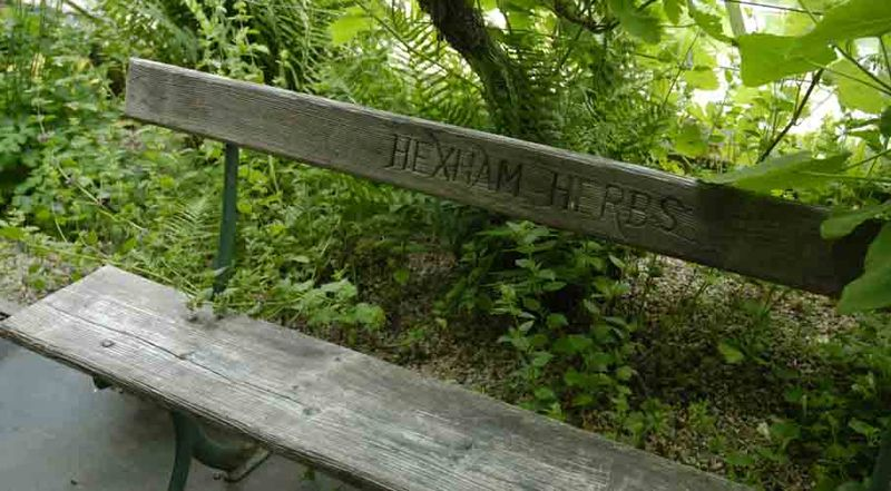Hexhan Herbs bench 26-2