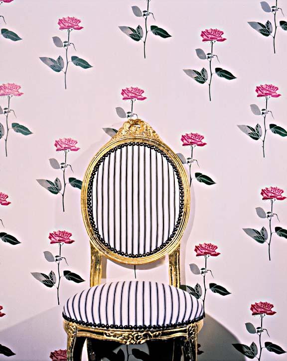 CA14 Roses stencil