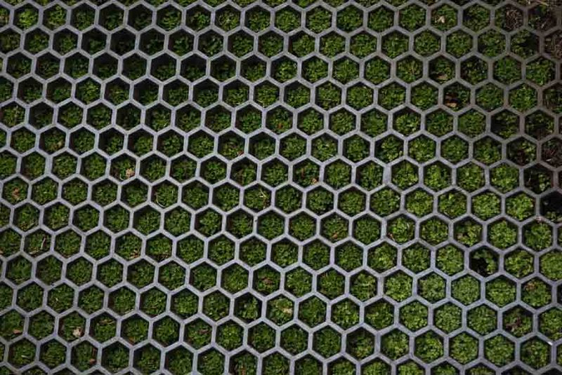 Grille at Chesters gardens 28-1