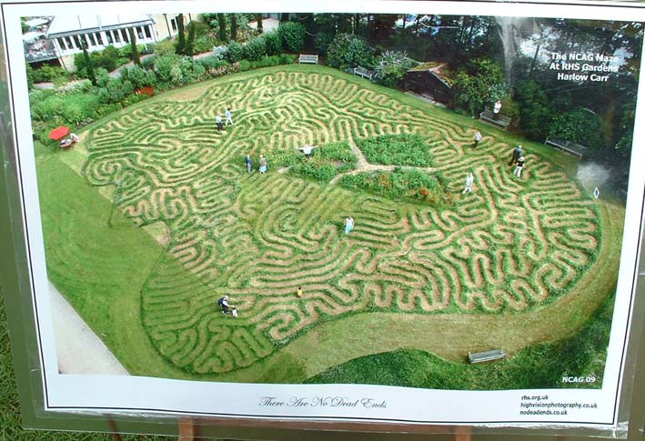 Maze at harlow carr 94