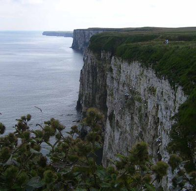 Cliffs yorkshire coast