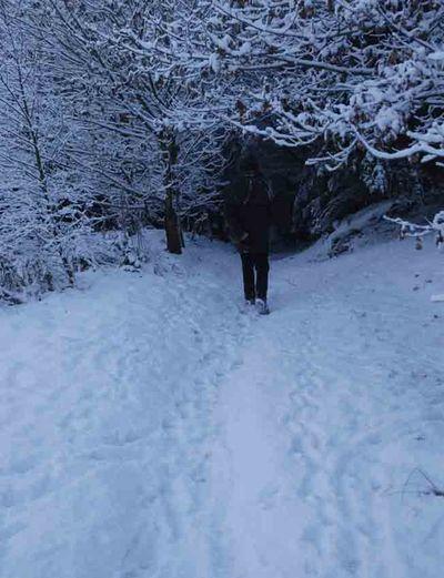 Kip in snow stocksfield 821