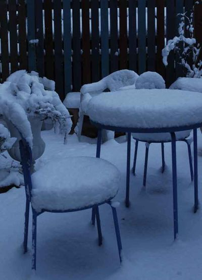 Chair upholstered in snow 207