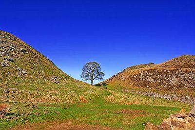Hadrians-wall-gap-uk