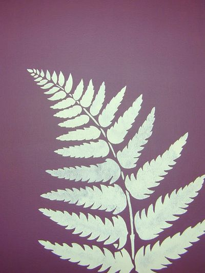 White co 21 fern