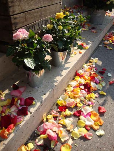 Pavement petals versailles 04