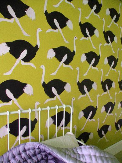 VN158 ostrich citrine