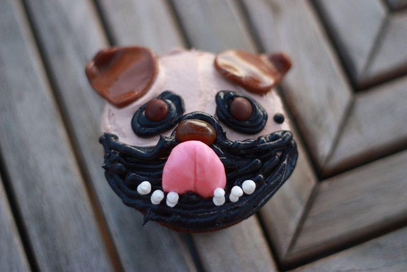 Arliss the pug blog IMG_9235
