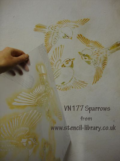 Vn177 sparrows bird stencil 17