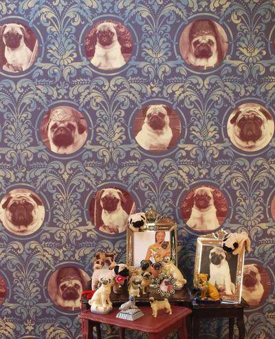 Pug print room stencil PR 11  25
