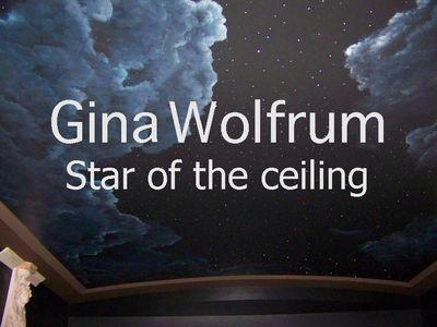 Gina Wolfrum Night sky - 3600 Swarovski's