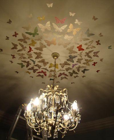 Butterflies around a light 22