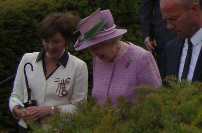 Duchess, queen & shearer alnwick 15