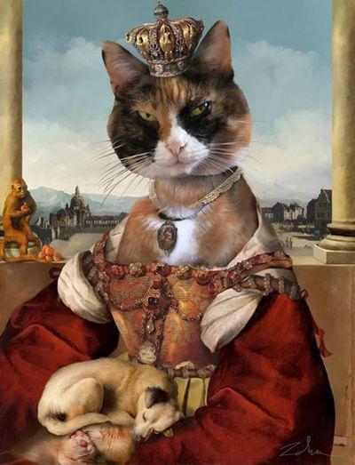 Pandora cat portrait