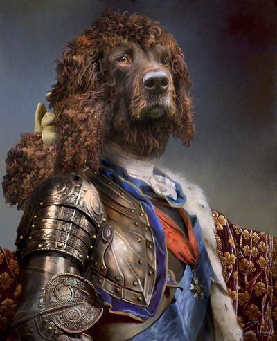 Armand dog portrait