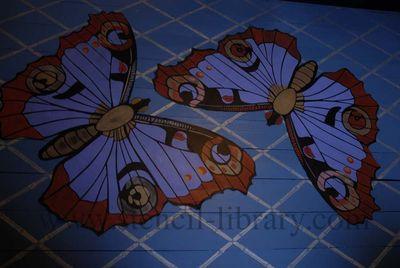 Butterfly stencil on floor.163