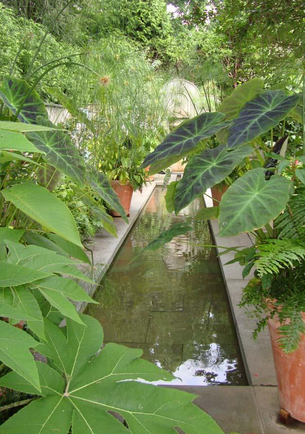Rectangular sky pond.993