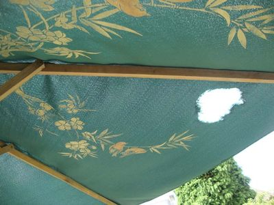 Nibbled painted parasol 11