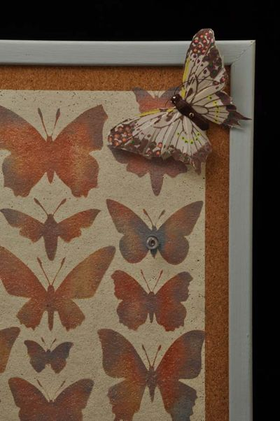 Butterfly pin board83