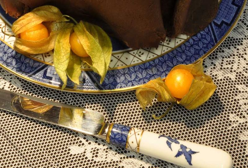Physalis and willow pattern