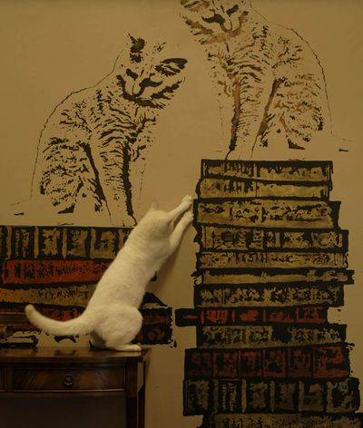 Book and cat stencil 069