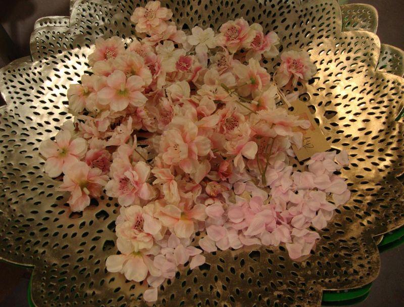 REcherry blossom14
