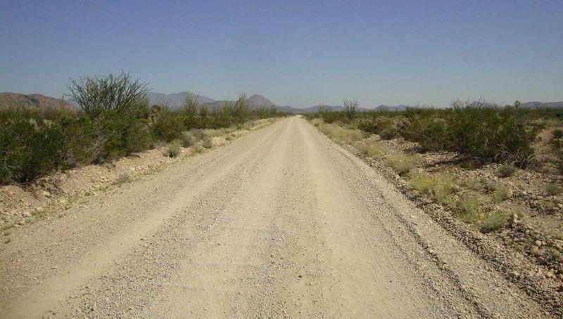 Desert texas