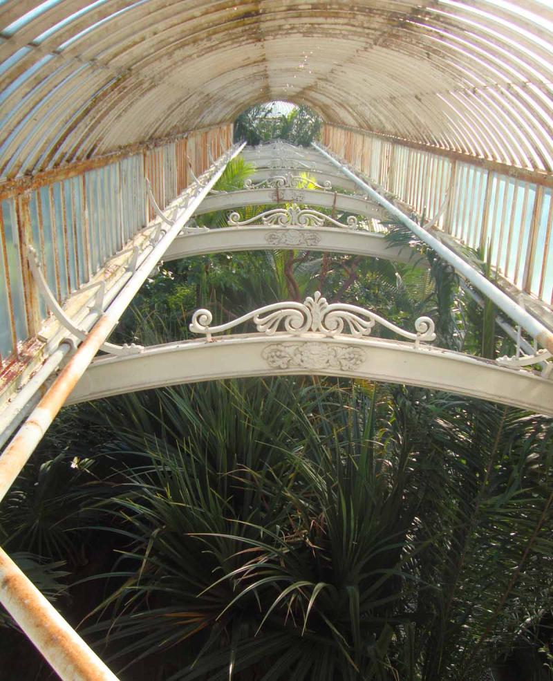 2 palmhouse