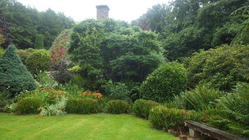 PChip garden