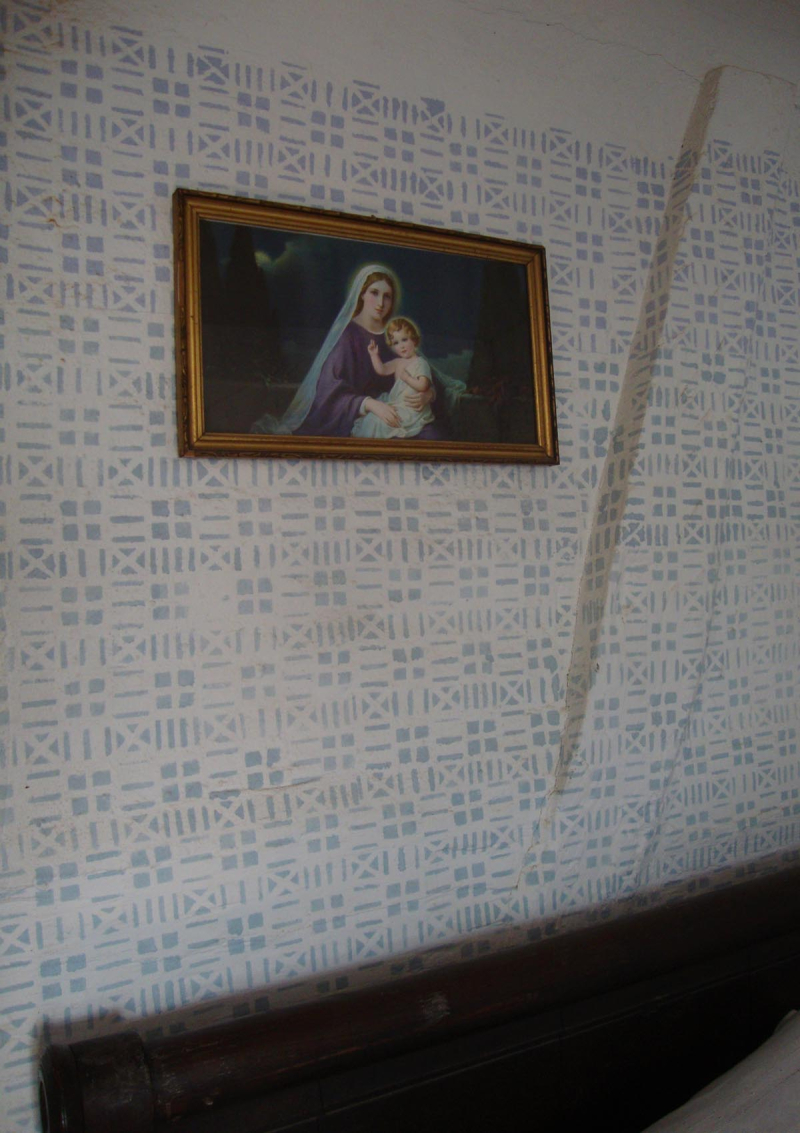Blue and white, historic stencilled walls